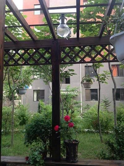 6W-solar--moon-light-garden-light